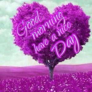Good Morning Whatsapp DP Profile Images Photo HD Download