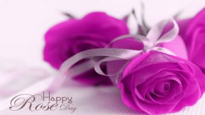 Good Morning Whatsapp DP Profile Images Wallpaper Pictures Download With Flower