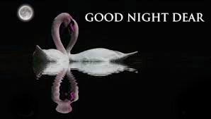 Good Night Whatsapp DP Profile Images Pictures Photo