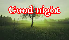 Good Night Photo Images Pics Download