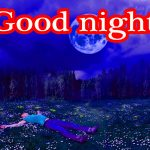 698+ Good Night Images Wallpapers for Whatsapp