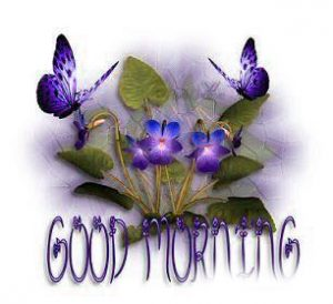 Good Morning Whatsapp DP Profile Images Photo Wallpaper