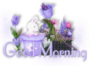 Good Morning Whatsapp DP Profile Images Pictures Photo