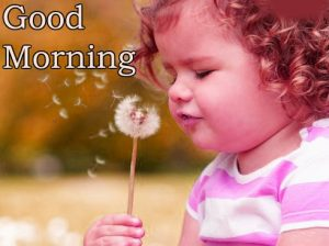 Good Morning Whatsapp DP Profile Images Wallpaper Photo Pics Download
