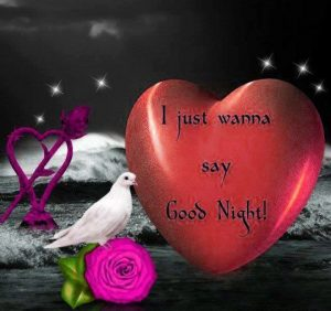 Good Night Whatsapp DP Profile Images Photo Wallpaper Pictures HD