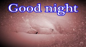 Good Night Pics Images Wallpaper For Facebook