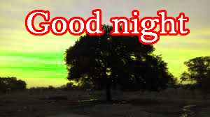 Good Night Pictures Photo Images HD