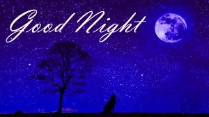 Good Night Images Photo Wallpaper Pictures HD Download