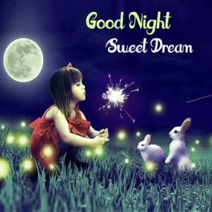 Good Night Whatsapp DP Profile Images Pictures Photo Download