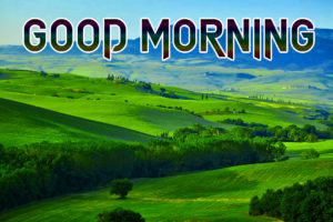 Good Morning Whatsapp DP Profile Images pictures photo hd download