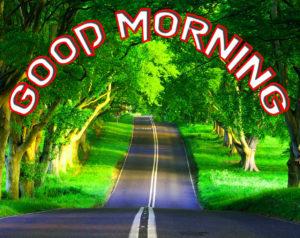 Good Morning Whatsapp DP Profile Images photo pics hd