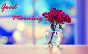 Good Morning Images Wallpaper Pics Free Download for Facebook & Whatsapp
