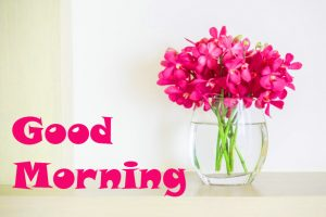 Good Morning Images Wallpaper pics With Flower
