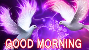Romantic Lover Lover Couple Good Morning Images Wallpaper for Facebook
