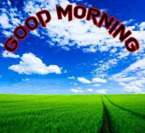 Good Morning Whatsapp DP Profile Images wallpaper photo free download