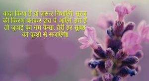 Best Hindi Shayari Images Wallpaper Pics HD Free Download