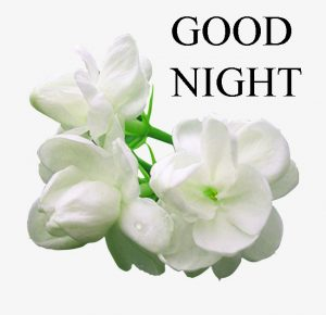 Beautiful Good Night Wishes Images Photo Pics HD