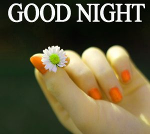 Beautiful Good Night Wishes Images Wallpaper Pictures