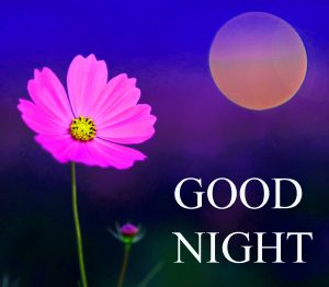 Beautiful Good Night Wishes Images Wallpaper pic Pictures