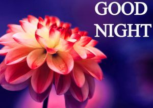 Beautiful Good Night Wishes Images Wallpaper Pics HD
