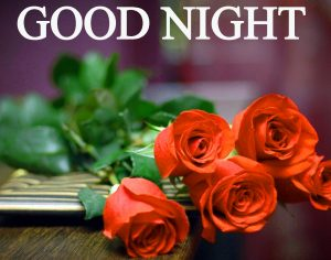 Beautiful Good Night Wishes Images Photo Pics free Download