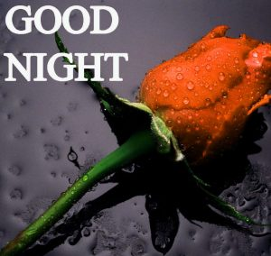 Beautiful Good Night Wishes Images Wallpaper Pics Free