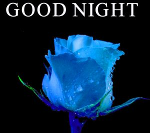 Beautiful Good Night Wishes Images Wallpaper Pics