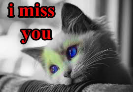 Sad I Miss you Images Wallpaper For Whatsapp