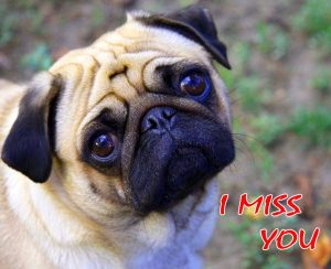 Sad I Miss you Images Wallpaper Pics Free