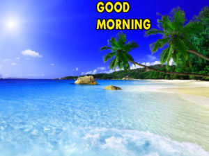 Good Morning Images HD Photo Wallpaper Pics Download