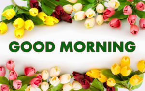 Good Morning Images photo wallpaper download
