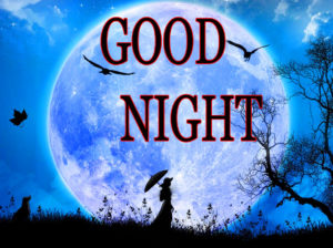 Lovely Good Night Images photo pics free download