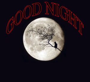 Lovely Good Night Images pictures photo download