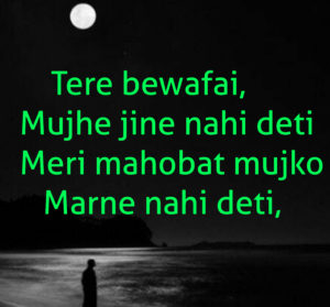 Latest Hindi Bewafa Shayari Images pictures photo hd