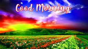 gd mrng images photo wallpaper download