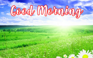 gd mrng images wallpaper pics free download