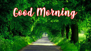 gd mrng images pictures photo free download