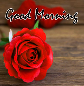Beautiful Good Morning Images For Him pics photo for facebook
