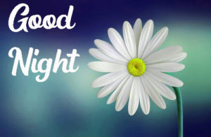 Good Night Images pics photo free hd
