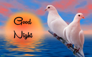 Lovely Good Night Images photo wallpaper download