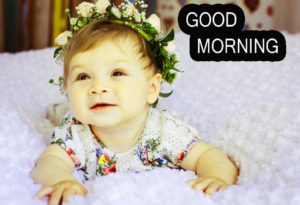 Good Morning Images pics photo free hd download