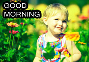Good Morning Images pics pictures free download
