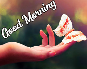 Beautiful HD Good Morning Love Images picture photo pics download