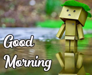 Beautiful HD Good Morning Love Images wallpaper pics photo download