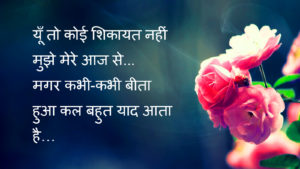 Best Hindi Love Shayari Images pics photo download