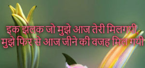 Hindi Bewafa Shayari Images Pics for Whatsapp & Facebook
