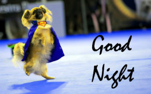 Funny Good Night Images wallpaper pictures free hd download