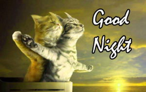 Funny Good Night Images wallpaper photo for  facebook