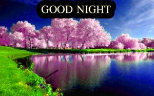Nature Good Night Images pics wallpaper free download