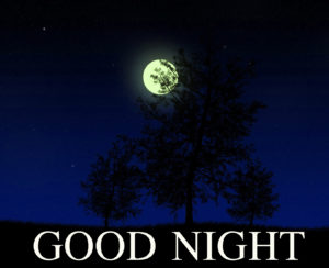 Nature Good Night Images pics photo download